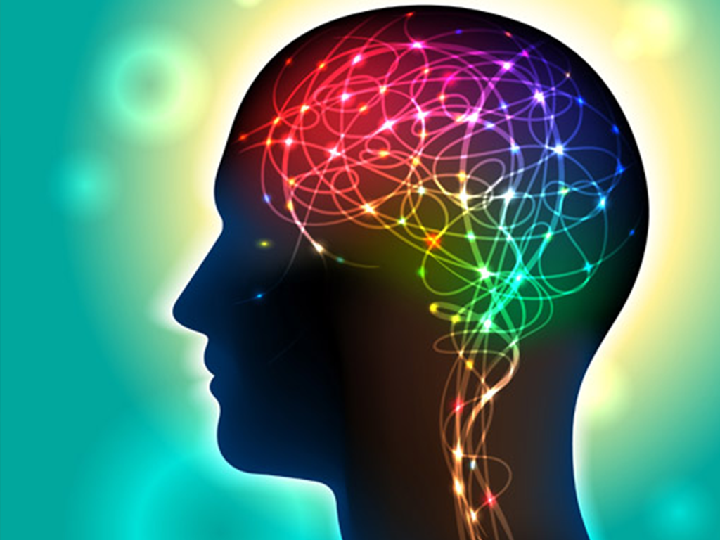 Psychology of safety head and brain